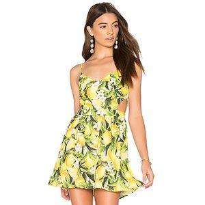 Show Me Your MuMu | Lemon Cutout Floral Dress
